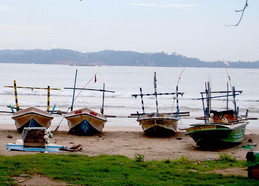 Srilankan fishing boats south sri lanka tour independent for Sri lanka fishing