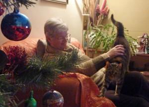 Mum and Cat at Christmas Back Home, Bangor, Northern Ireland