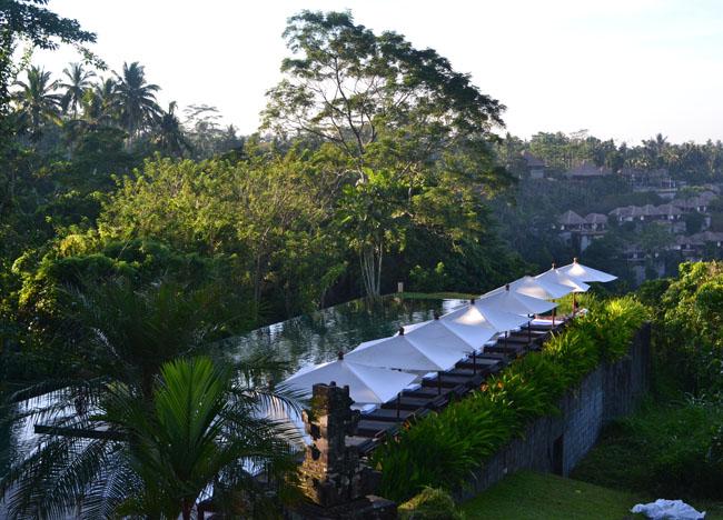Swimming Pool View, Wedding at Alila Ubud, Married in Bali Indonesia