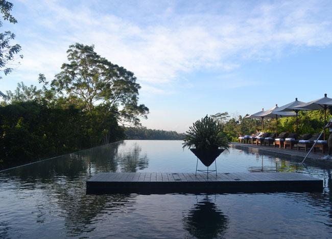 Infinity Pool, Wedding at Alila Ubud Resort, Married in Bali Indonesia