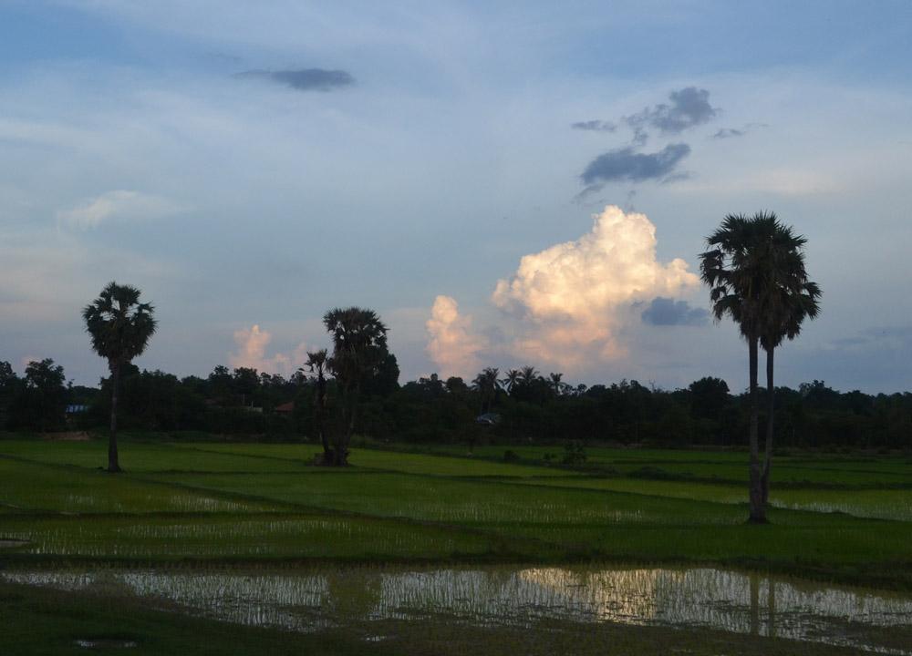 Rice Fields Laos, Savannakhet to Pakse by Bus, Travel in Southern Laos