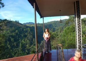 Ella Tea Garden Inn, South Sri Lanka Tour, Independent Travel Asia