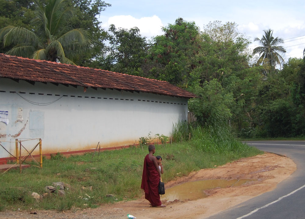 Young Buddhist Monk, South Sri Lanka Tour, Independent Travel Asia
