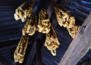 Dried Yak Cheese, Himalayan Food, Eating in the Himalayas, Sikkim