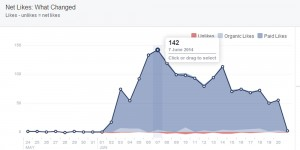 Facebook Likes through Advertising, Build Subscribers to your Travel Blog