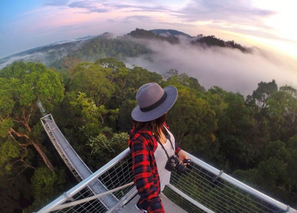 Ulu Ulu Resort in Brunei, Phobias in Borneo Rainforests